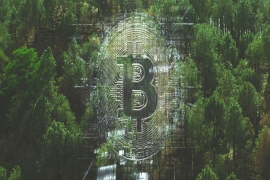 'Mining' of BitCoins jeopardises the environment