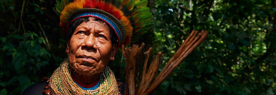 Amazon Rainforest indigenous elder